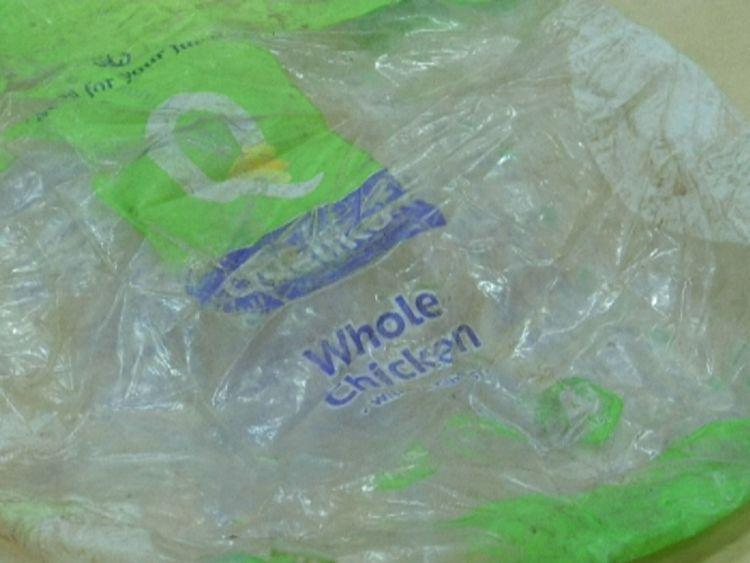این نهنگ بخاطرخوردن کیسه های پلاستیکی مرد