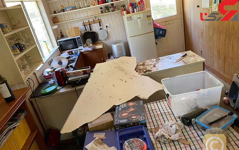 مار پیتون در خانه مرد استرالیایی (1)