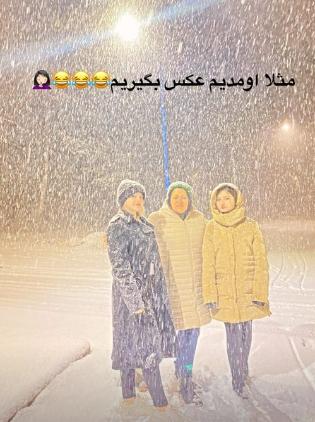 Screenshot_2020-12-26 Sara Forghani سارا فرقانی ( saraforghaniofficial) • Instagram photos and videos