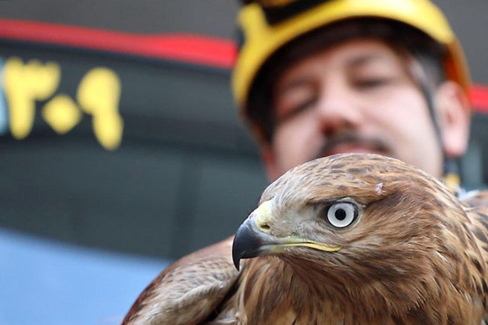 عقاب ورود به خانه