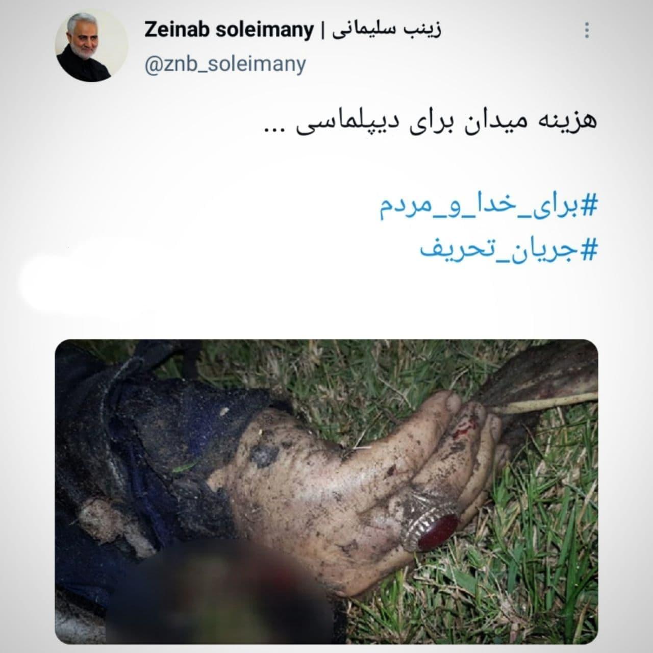 واکنش فرزند شهید حاج قاسم سلیمانی به ادعاهای ظریف