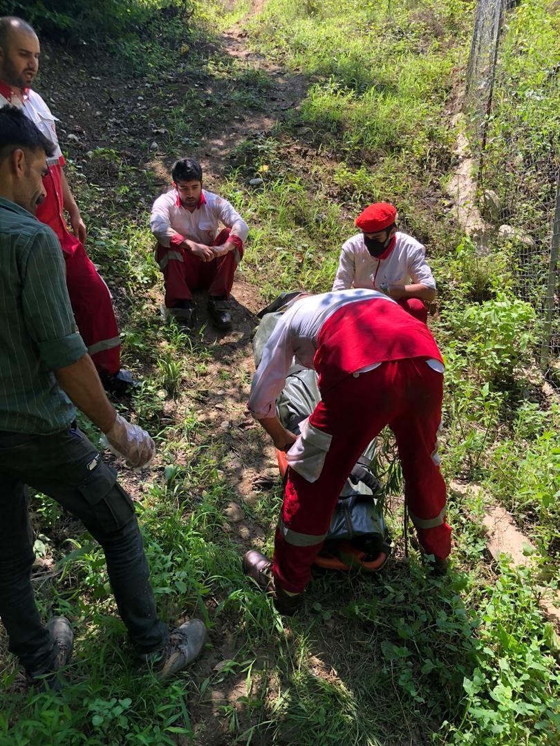 فیلم عملیات نجات سرنشین مصدوم سقوط کرده به دره در جاده کیاسر