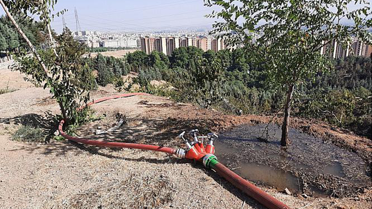 آتش سوزی در پارک جنگلی کوهسار مهار شد