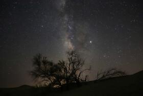 ستاره در شب