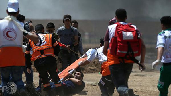 غزه (4)