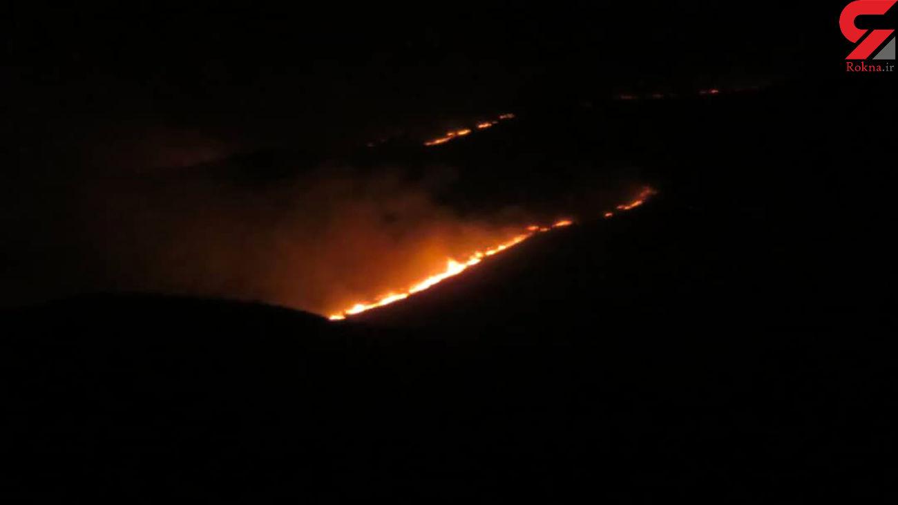 مهار آتش کوه کله شاخ دشتستان بوشهر به کمک مردم