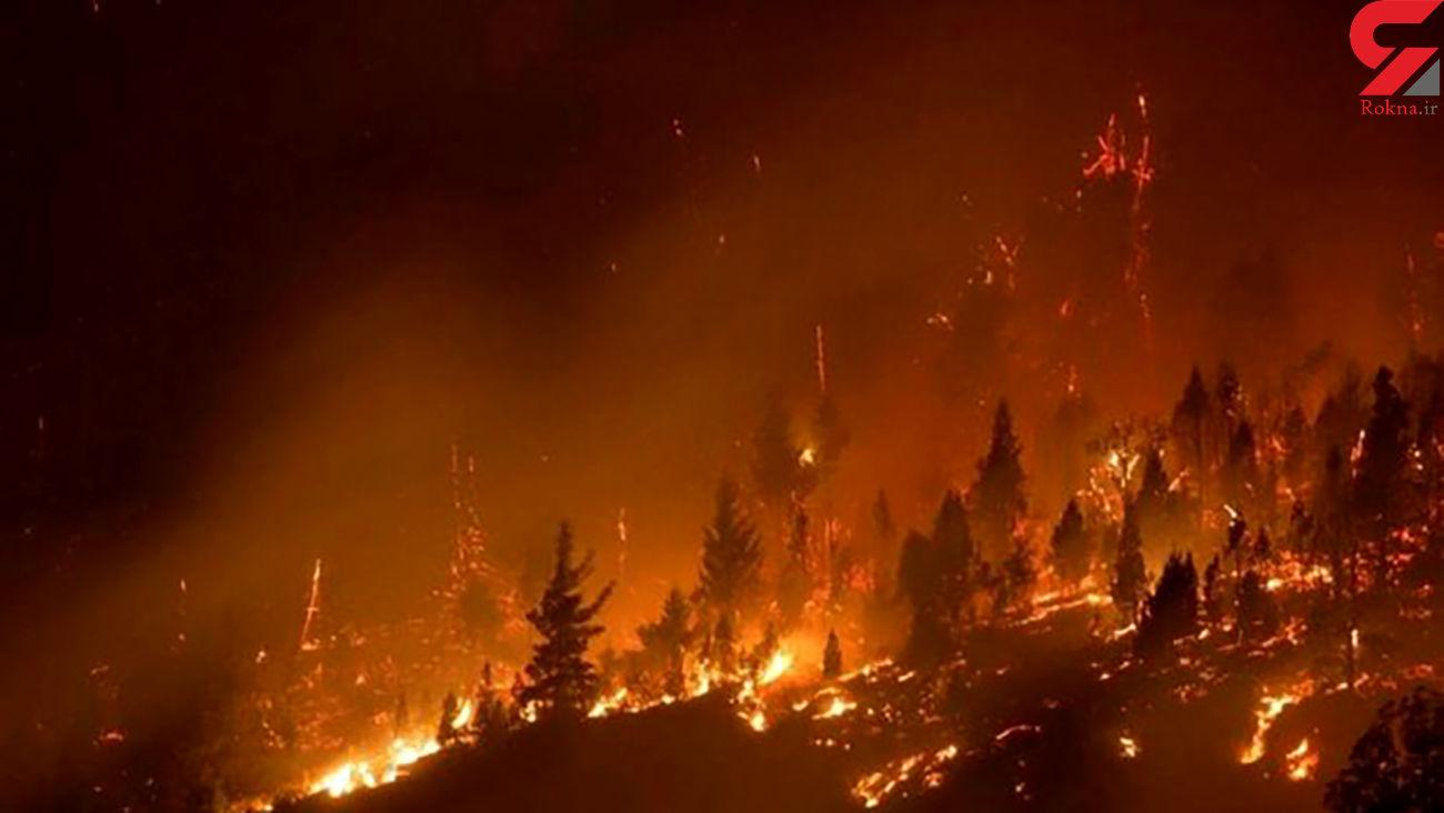 4 هکتار از ذخیره گاه جنگلی سمیرم در آتش سوخت