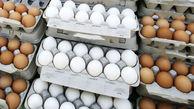 علت گرانی تخم مرغ مشخص شد