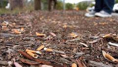 ساخت درخت طبیعی از سیگار