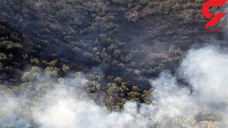 ۲۶ استان درگیر توفانهای ریزگرد/آتشسوزی و تخریب حدود ۵۲۰ هکتار از اراضی جنگلی کشور