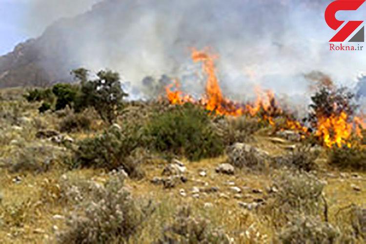 عامل آتش سوزی اراضی ملی جاده تهم دستگیر شد