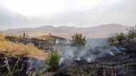 آتش سوزی مراتع روستای چمرود مهار شد