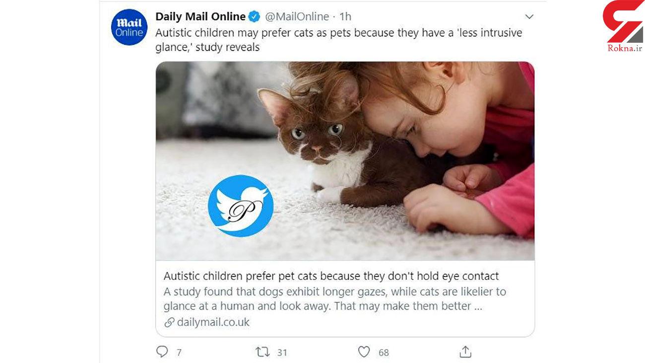 حیوان خانگی بیماران اوتیسم چیست؟