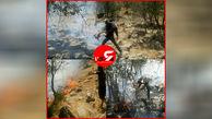 درختان تمبی در چنگال آتش + عکس