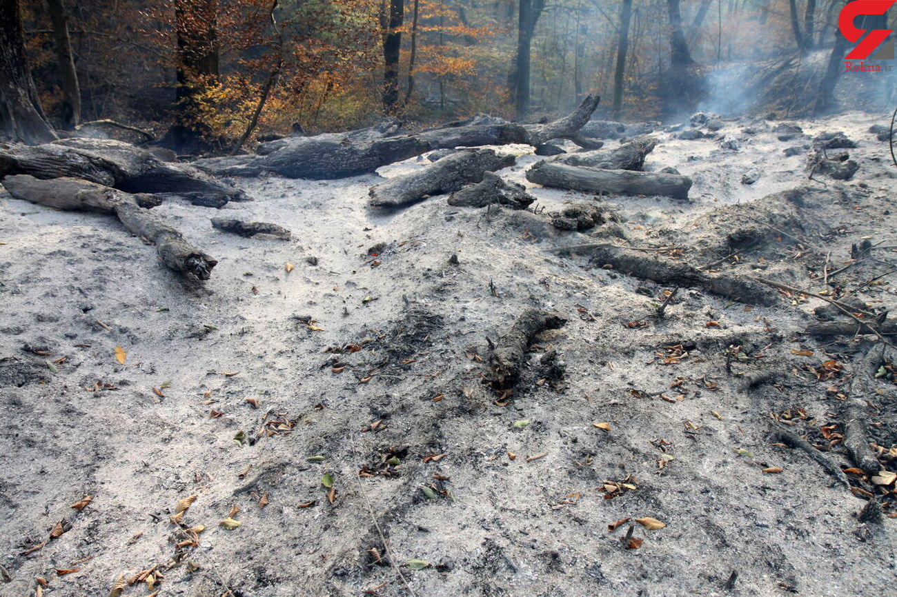 تصویب ۱۰ میلیارد ریال اعتبار برای مقابله با آتش در پارک ملی گلستان