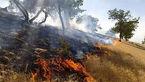 ارتفاعات کوه دیل گچساران در محاصره آتش