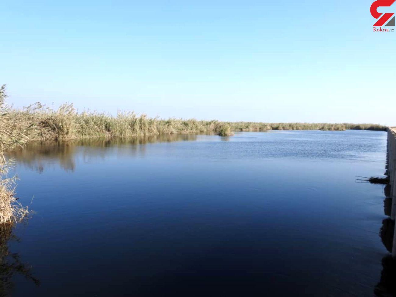 احیاء دریاچه ارومیه الگوی مدیریت تالاب های کشور شود