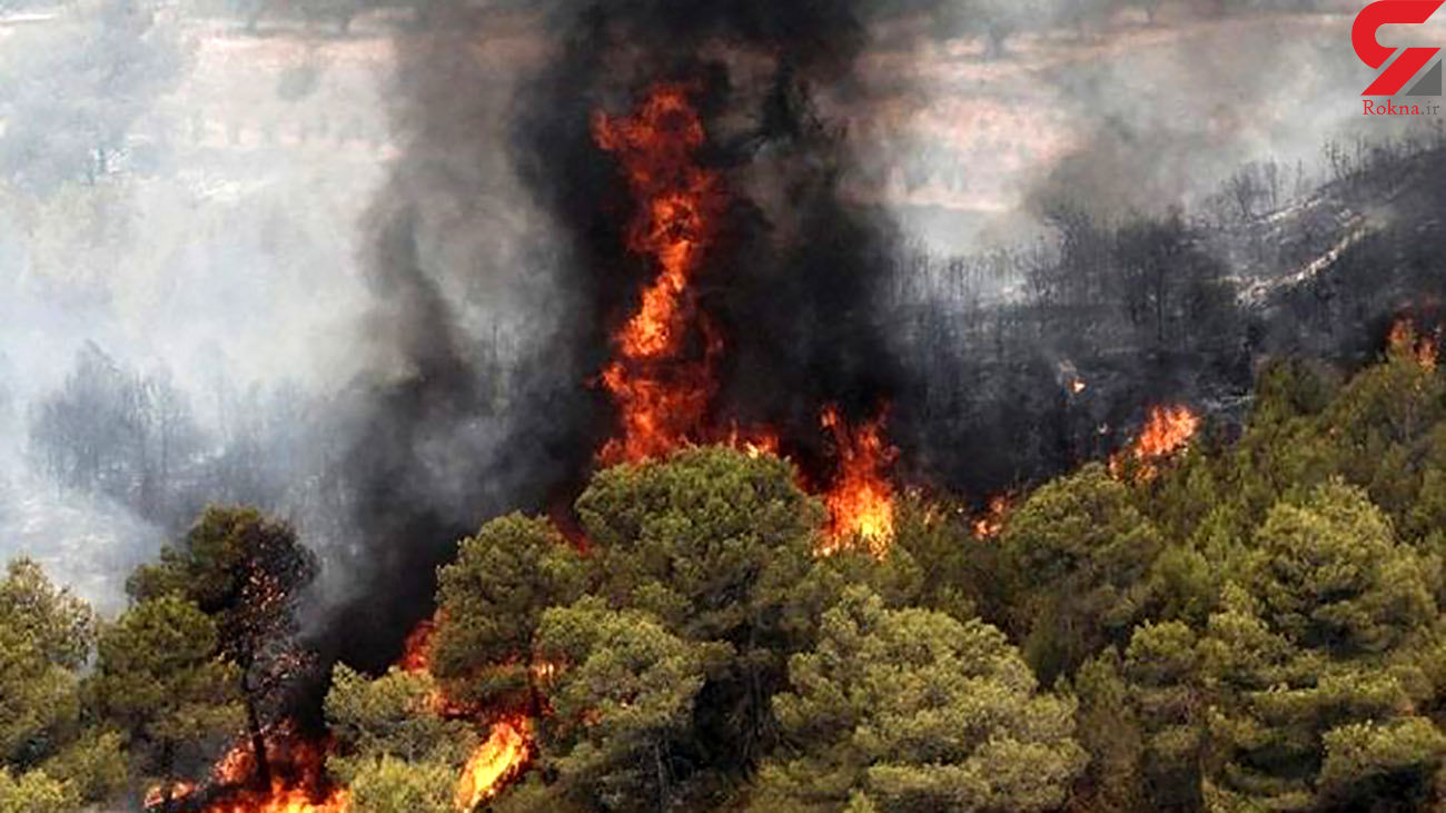 آتش سوزی در باغهای گلکار تبریز