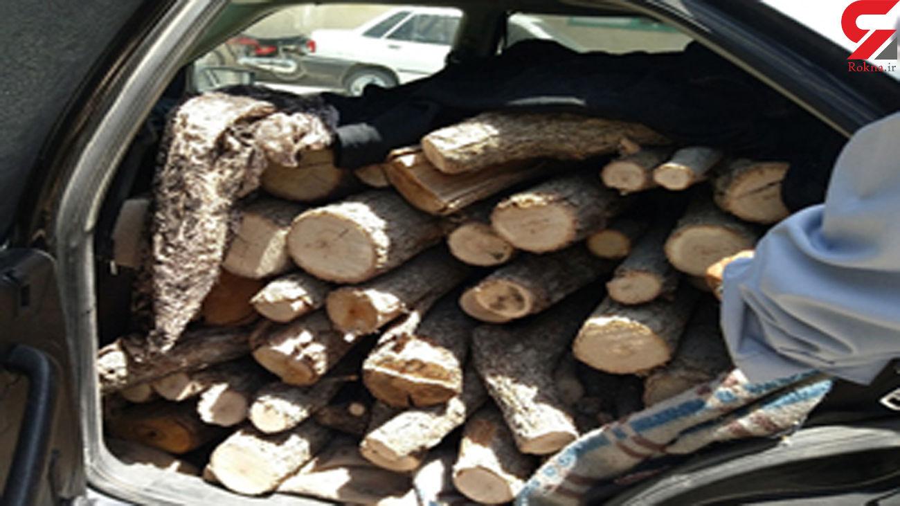 کشف 2 دستگاه خودرو حامل چوب قاچاق در شهرکرد