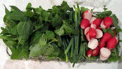 سرطان در کمین مصرف کنندگان سبزی های آلوده
