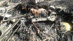 مرگ یک زن در محاصره آتش