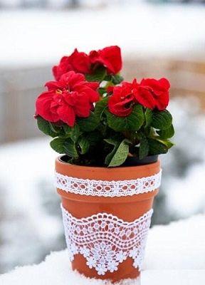 گلدان5