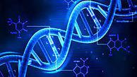 14 حقیقت جالب از دنیای DNA