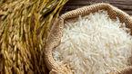 قیمت برنج زیر 20 هزار تومان به زودی
