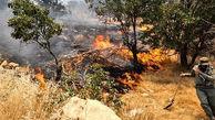 تداوم آتش سوزی جنگل ها در مرودشت
