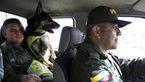 جایزه 70 هزار دلاری برای سر یک سگ پلیس + عکس