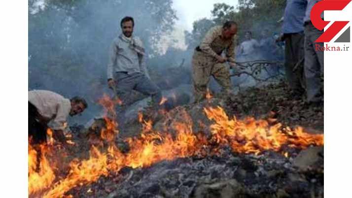 مصدومیت 3 محیط بان در آتش سوزی پارک ملی گلستان