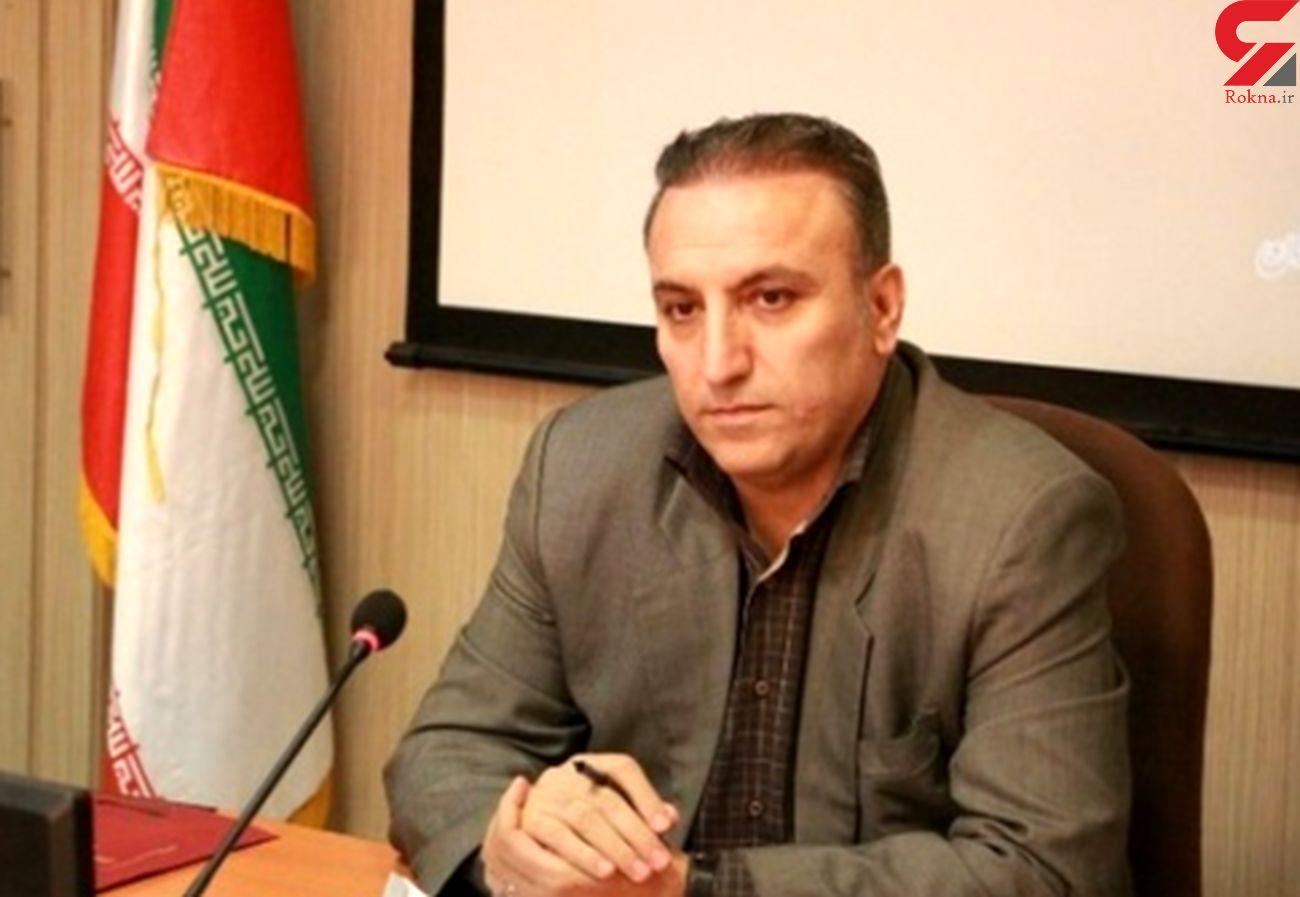 امسال  400 کیلومتر از شبکههای سیمی استان به کابل خودنگهدار تبدیل خواهد شد