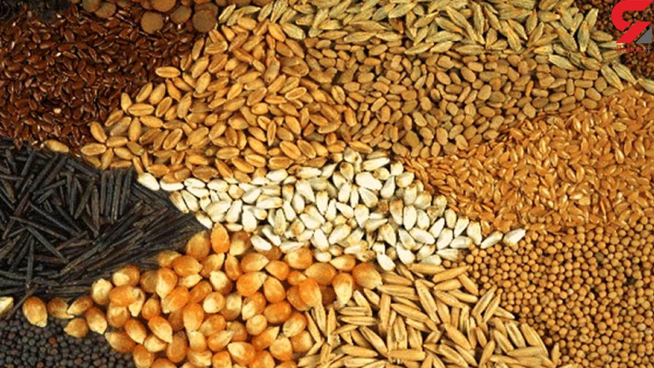 واردات خوراک دام و طیور عملا ممنوع شد