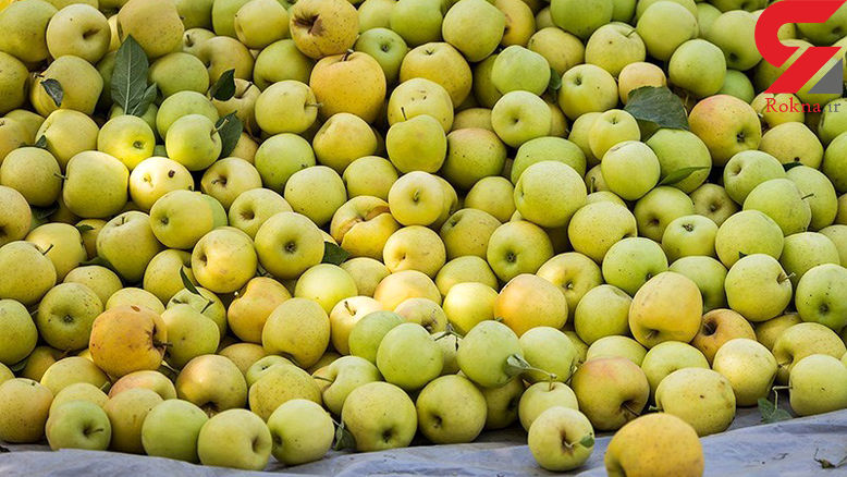 شرایط واردات موز در قبال صادرات سیب از بازارچههای مرزی اعلام شد + سند