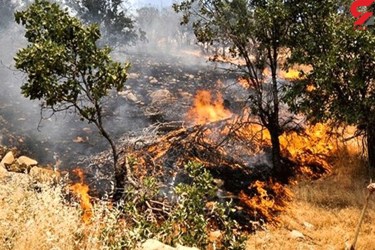 امین آباد فیروزکوه در آتش سوخت