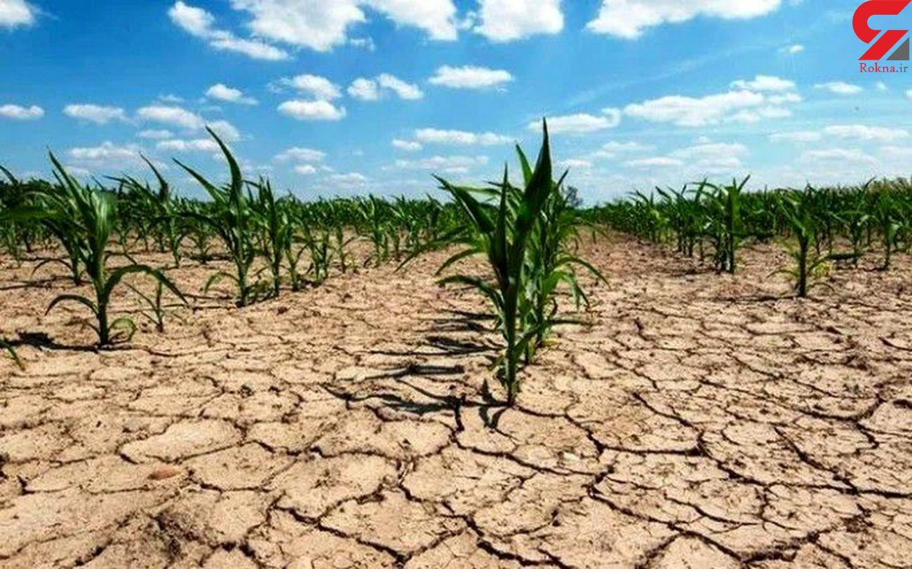 نبود منابع مالی و عدم تخصیص حقآبه مانع توسعه کشاورزی استان