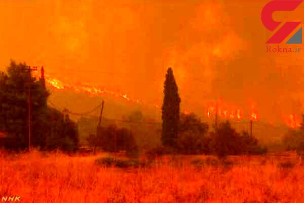 تخلیه 5 هتل به دلیل آتش سوزی / در جزیره ساموس یونان رخ داد + عکس