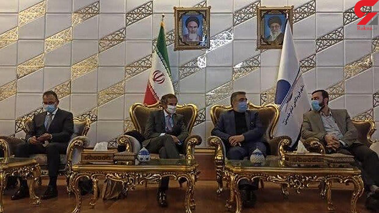 «رافائل گروسی» وارد تهران شد