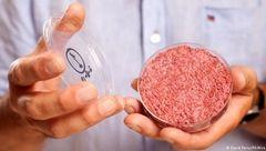 گوشت مصنوعی در راه بازارهای آمریکا