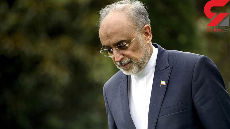 صالحی: امروز بازرسان آژانس وارد ایران میشوند