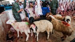 ذبح دام عید قربان در معابر عمومی ممنوع