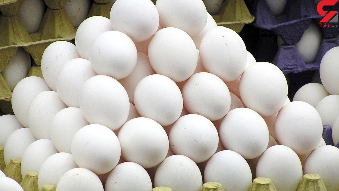دلیل افزایش شدید قیمت تخم مرغ فاش شد + جزئیات