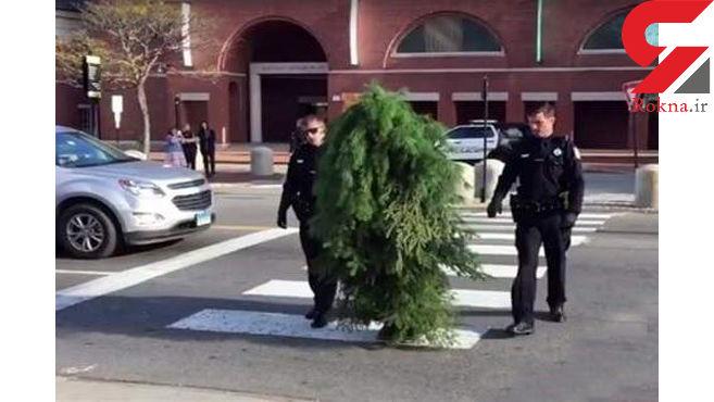 «مرد درختی» دستگیر شد +عکس
