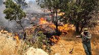 خشکسالی آتشسوزی در مراتع را سرعت میدهد / در همدان رخ داد