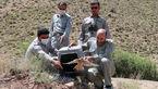 کشف 176 پرنده شکاری قاچاق در دیر بوشهر