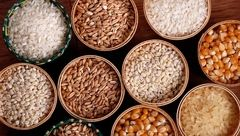 9 دانه روغنی که باید در رژیم غذایی تان باشد