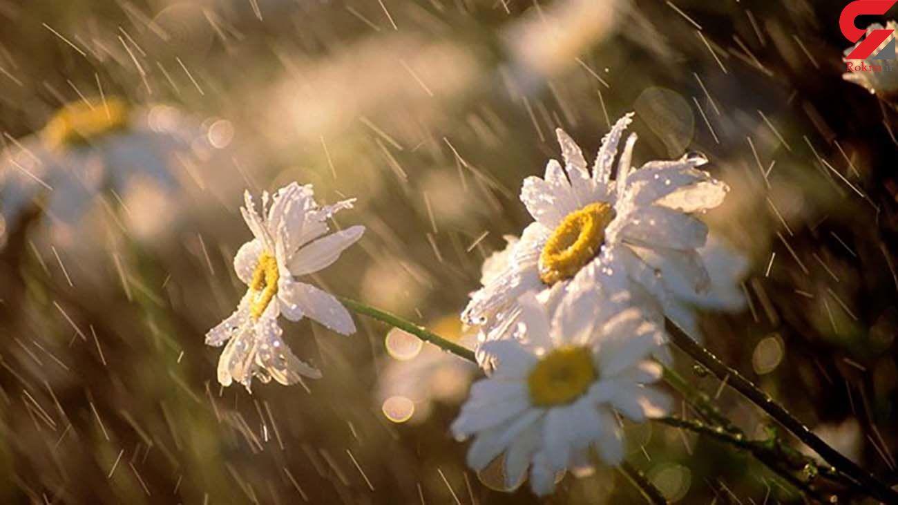 وضعیت بارش باران و برف در کشور