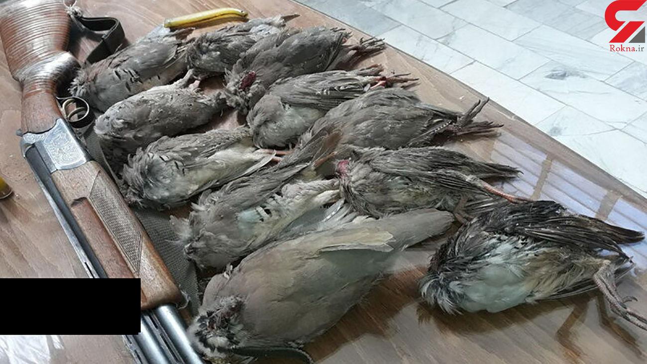 دستگیری شکارچیان پرندگان در فاروج