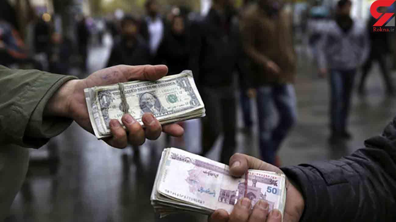 سرقت دلار در یزد، دستگیری سارق در کاشمر