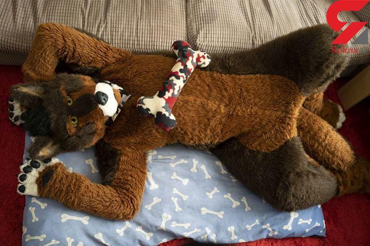 زندگی به سبک سگی/این مرد با قلاده و لباس سگ احساس خوشبختی میکند!+ تصاویر